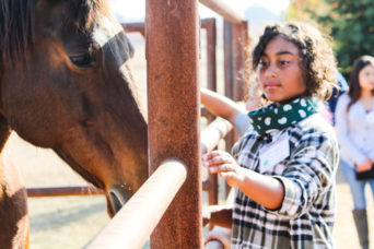Image of child petting a horse