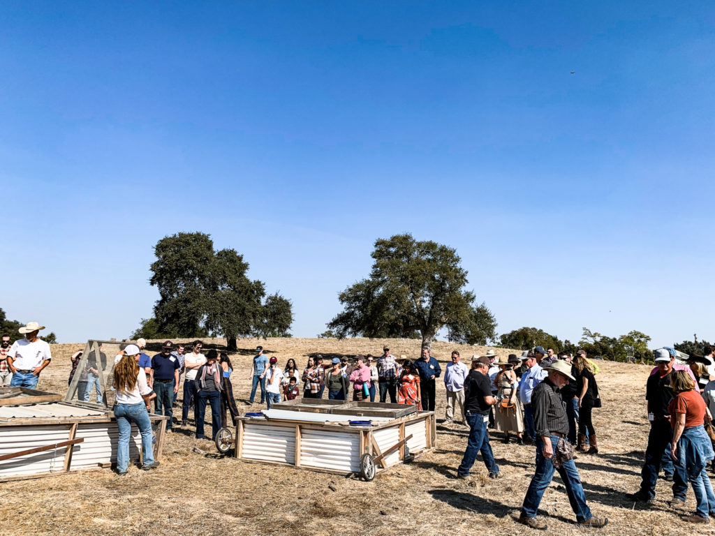 Image of people gathered around chicken coups in field