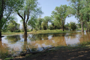 Image of vernon pools at apple road ranch.