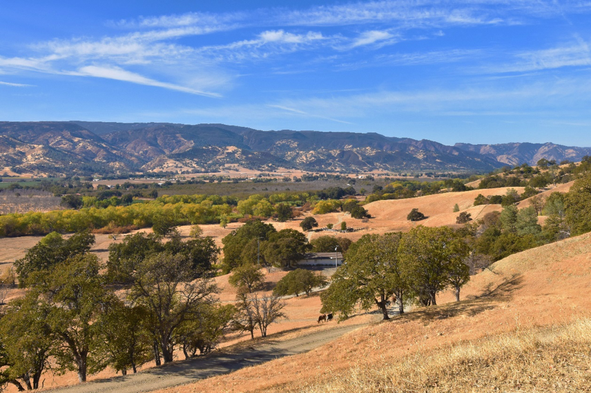 Image of the TS ranch in Yolo County