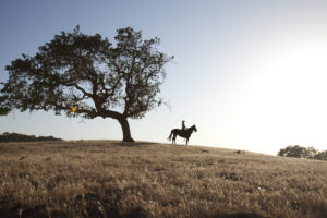 Jessica Schley Riding on Family Ranch
