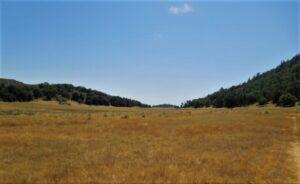 Mendenhall Ranch on Palomar Mountain